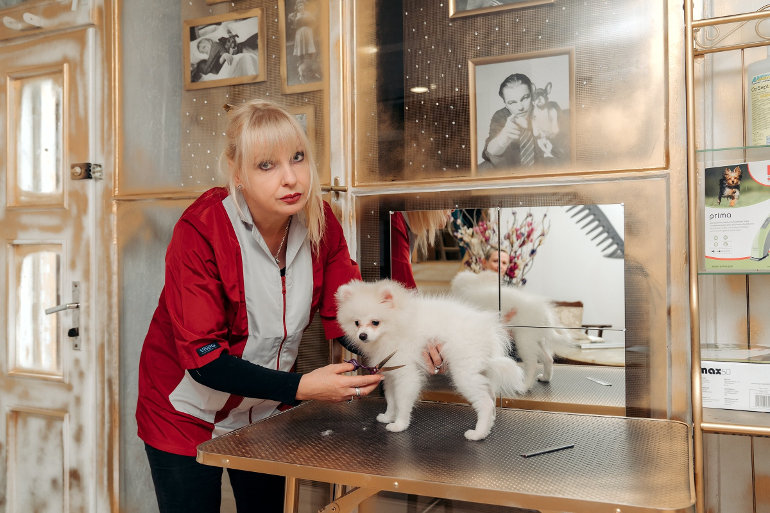 Otevřeli jsme nový luxusní salon pro psy a kočky Petgrooming Company
